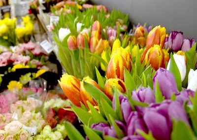 Frische Blumen bei EDEKA Fackler